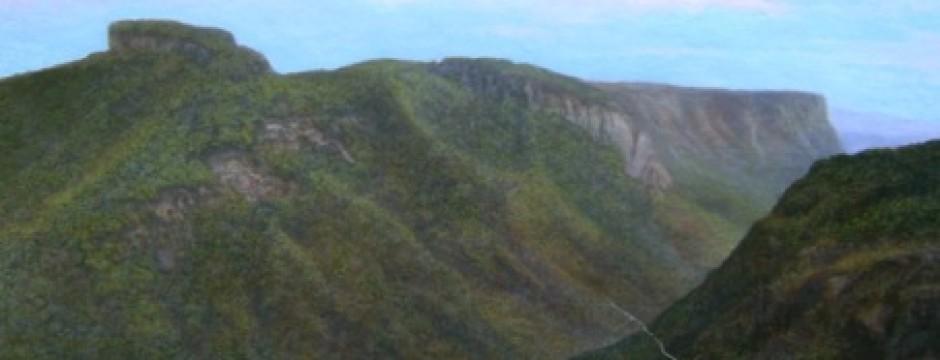 linville-gorge-summera-w