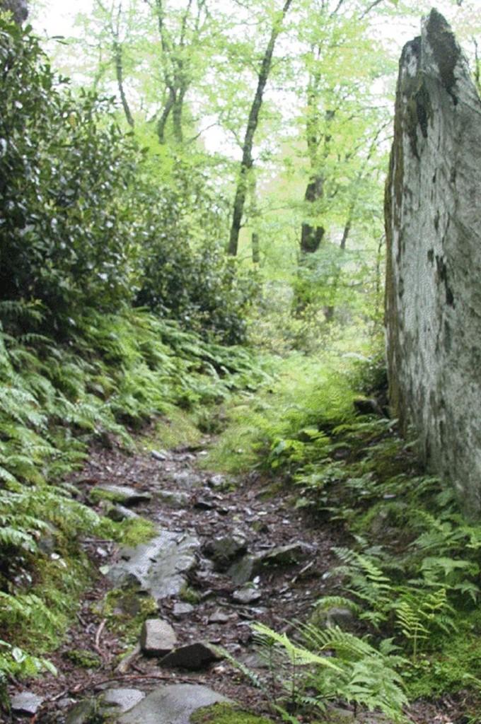 lamar trail nooga