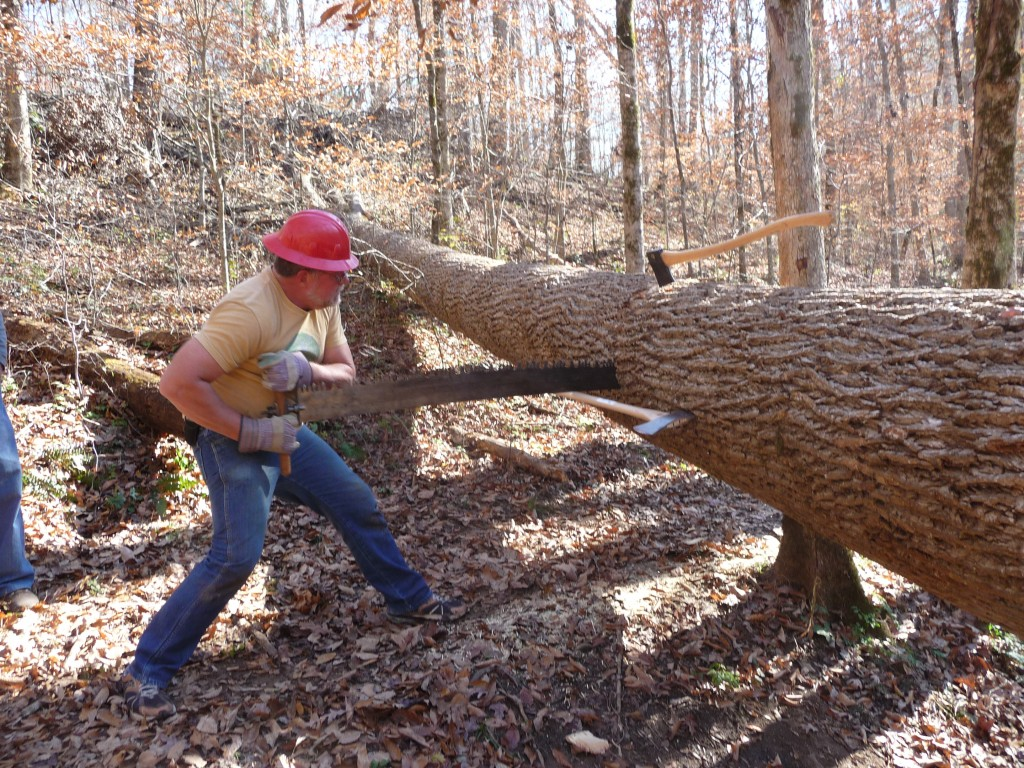 Helping Hands_11-17-12_trail 206