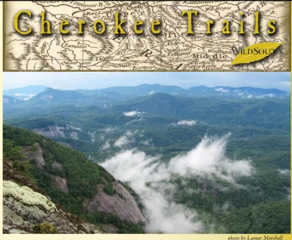 cherokee trails lamar