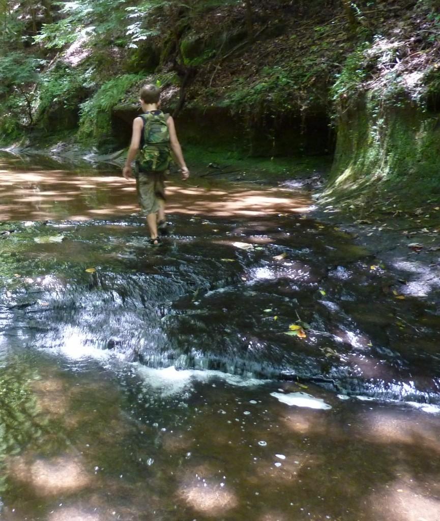 Parker Branch  hike7-28-12 019
