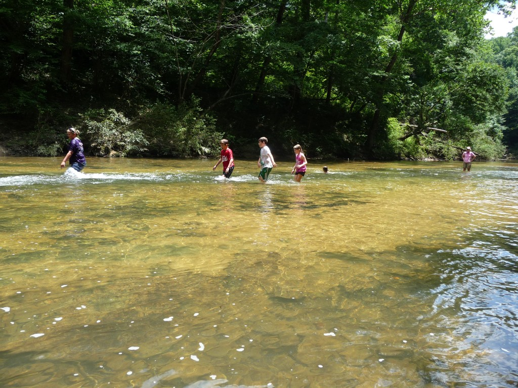Sipsey Fork 7-17-13 013