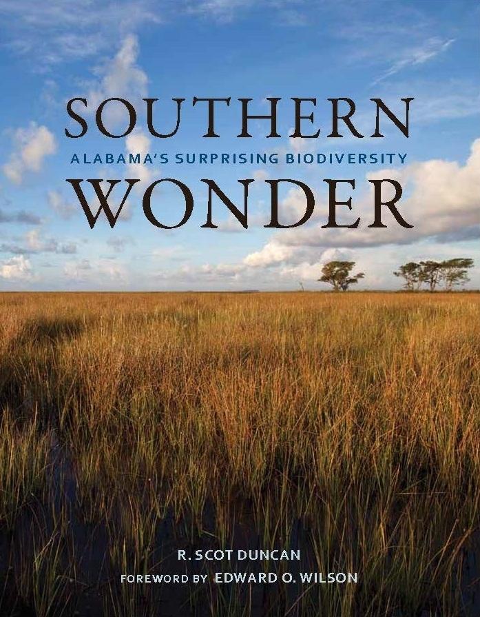 Southern wonder jkt