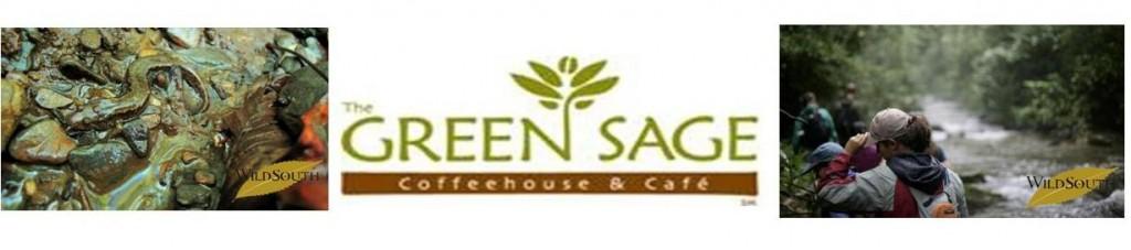 Green Sage Match