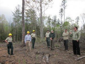 Meeting with USFS and partners on ecological restoration project.