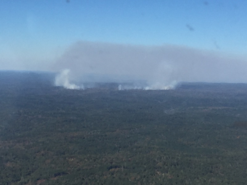 Aerial view of Sipsey Wilderness Fire101915