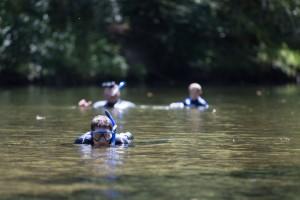 Tn Wild Snorkling (1)