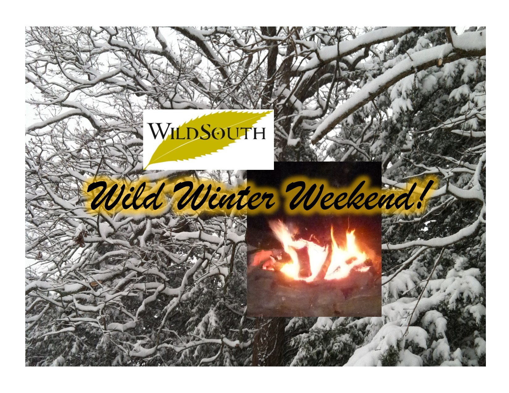 WildWinterWeekend2016 photo