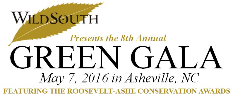 8th Annual Wild South Green Gala @ The Millroom | Asheville | North Carolina | United States