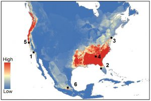 Bsal vulnerability model for North America (Yap et al. 2015)
